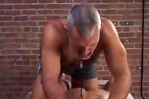 hariy daddy t live without to abuse